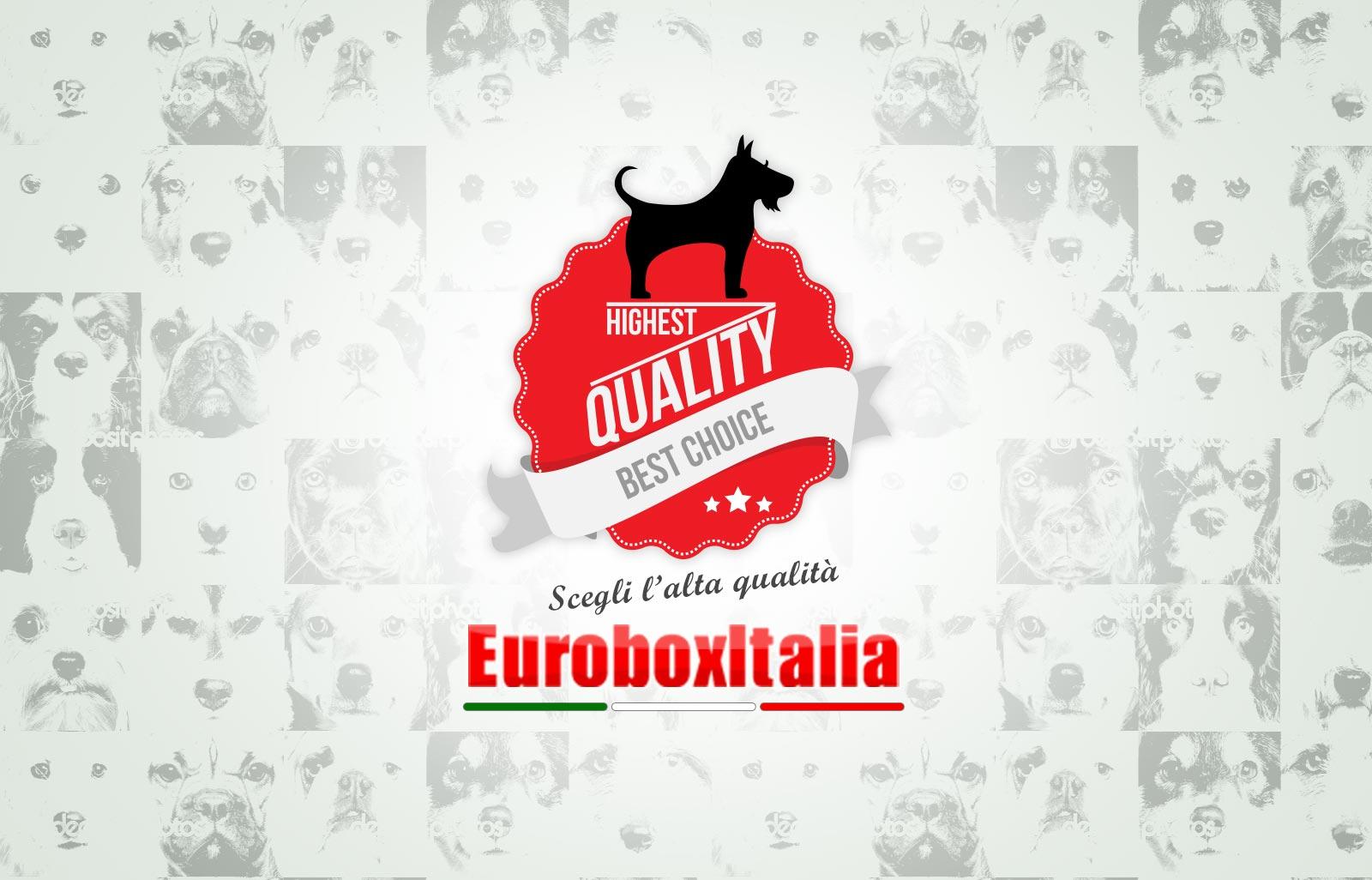 Eurobox Italia - cucce, box per cani e recinti